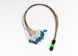 12 Fiber MTP/MPO (f) Elite- LC Single Mode Fan-Out Cable Assembly