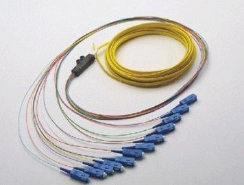 الصين Optical Fiber Patch Cord Pigtail 1, 4, 6, 8, 12, 24, 36, 72, Fibers Bunch Fan-out Splitter المزود